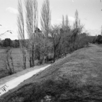 Photo of Nepean River, opposite Audrey Watson's home